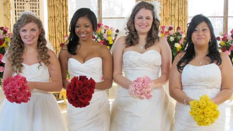 Quattro matrimoni USA