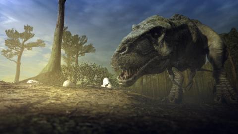 Jurassic wars