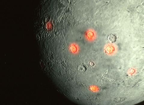 Obiettivo Luna